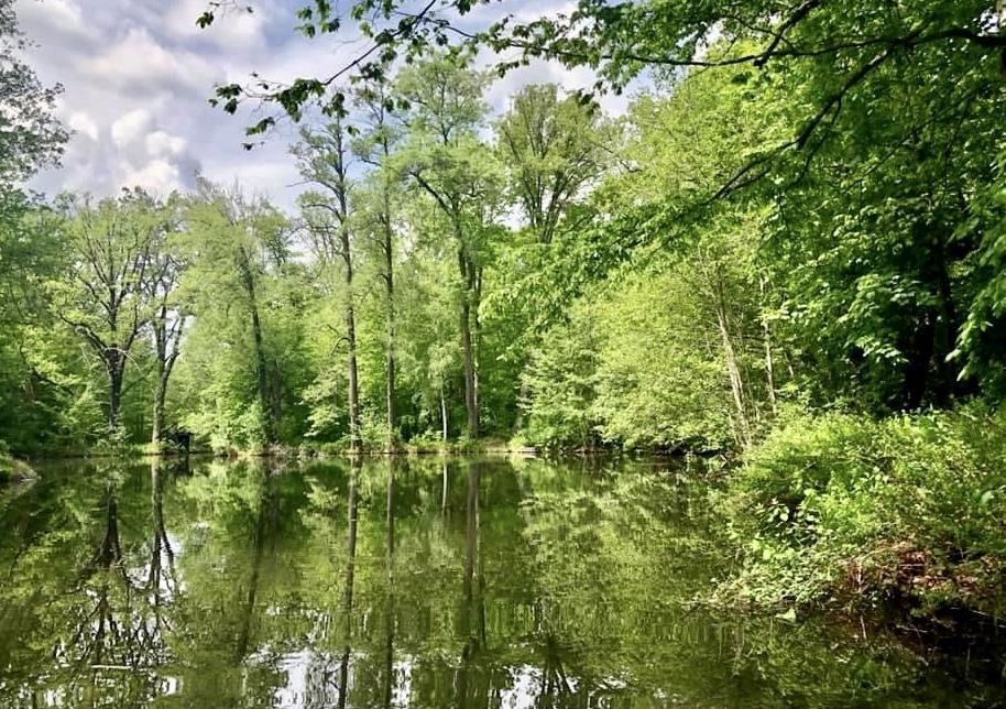 Urlaub Spreewald Wasserlandschaft