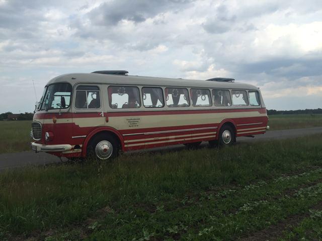 Bus im Spreewald rot weiss