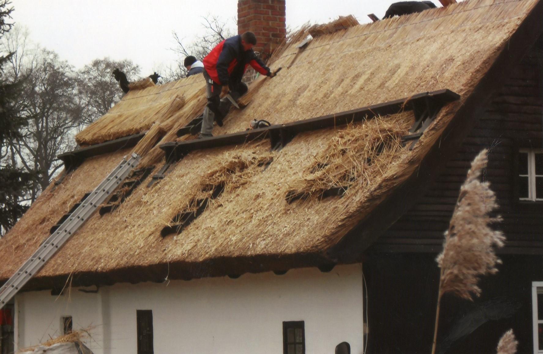 Dachdecker beim Schilfrohrverlegen Spreewald Handwerk