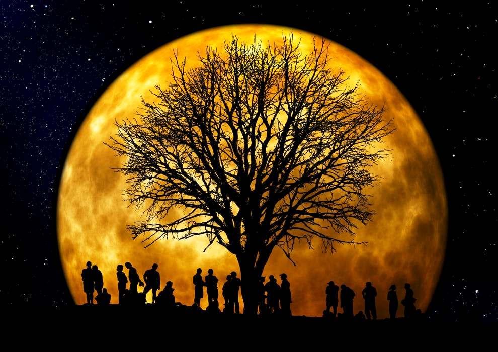 Gruppe im Mondschein